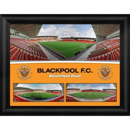 "BPPM16 - Framed Photographic Print  Print Size: 406x305mm (16x12"") BPPM8 - Framed Photographic Desktop Print Print Size 203x152mm (8x6"") Supplied with a Strut Back Stand for Desktop Display"