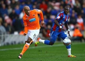 npower Football League Championship - Blackpool v Crystal Palace - Bloomfield Road