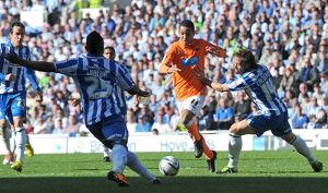 npower Football League Championship - Brighton and Hove Albion v Blackpool - AMEX Stadium