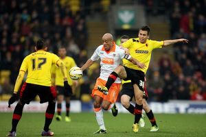 npower Football League Championship : Watford v Blackpool : Vicarage Road : 09-03-2013 (Selection of 16 Items)