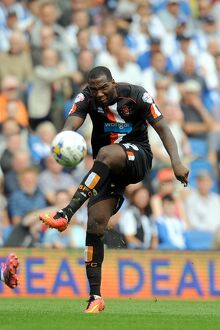 <b>Sky Bet Championship - Brighton and Hove Albion v Blackpool - AMEX Stadium</b><br>Selection of 5 items