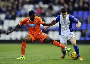 <b>Sky Bet Championship : Birmingham City v Blackpool : St Andrew's : 23-11-2013</b><br>Selection of 16 items